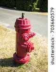 red fire hydrant on the street | Shutterstock . vector #703660579