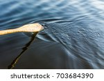 closeup of oar paddle from row... | Shutterstock . vector #703684390
