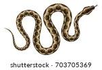 brown python vector... | Shutterstock .eps vector #703705369