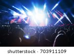 crowd at concert   cheering... | Shutterstock . vector #703911109