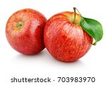 two ripe red apple fruits with... | Shutterstock . vector #703983970