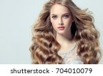 blonde fashion  girl with long  ...   Shutterstock . vector #704010079