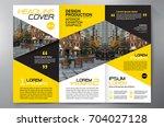 business brochure. flyer design....   Shutterstock .eps vector #704027128