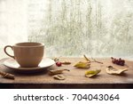 cup of autumn tea  coffee ... | Shutterstock . vector #704043064