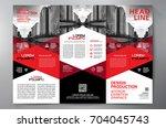 business brochure. flyer design.... | Shutterstock .eps vector #704045743