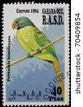 Small photo of SAHARA OCC RASD - CIRCA 1994: A stamp printed in Sahara OCC. R.A.S.D showing parrot, circa 1994