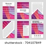 abstract vector layout... | Shutterstock .eps vector #704107849