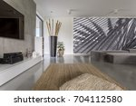 interior of modern day room... | Shutterstock . vector #704112580