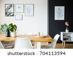 modern dining room with plant... | Shutterstock . vector #704113594