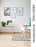 modern bright apartment... | Shutterstock . vector #704113984