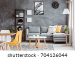 multifunctional living room... | Shutterstock . vector #704126044