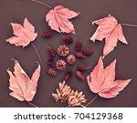 autumn arrives. fashion design. ... | Shutterstock . vector #704129368