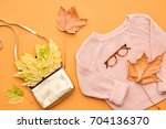 falltime fashion lady clothes... | Shutterstock . vector #704136370
