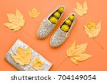 fall fashion glamour lady look... | Shutterstock . vector #704149054