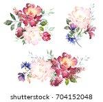set watercolor flowers. hand... | Shutterstock . vector #704152048