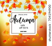 autumn sale banner with... | Shutterstock . vector #704194900