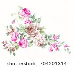blooming flowers  the leaves... | Shutterstock . vector #704201314
