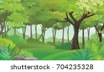 Dense Green Forest.rain Forest...