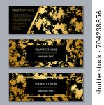 set of black and gold banners... | Shutterstock .eps vector #704238856