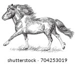 Vector Hand Drawing  Pony...