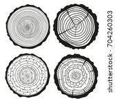tree rings. set of cross... | Shutterstock . vector #704260303
