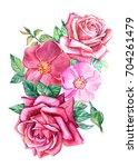 watercolor illustration ... | Shutterstock . vector #704261479
