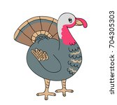 vector drawing of a turkey... | Shutterstock .eps vector #704305303