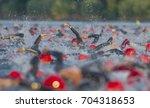 ironman triathlon frankfurt | Shutterstock . vector #704318653
