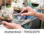 garden in bottle   terrarium... | Shutterstock . vector #704322070