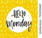 vector trendy hand lettering... | Shutterstock .eps vector #704335669
