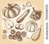 ink hand drawn set of... | Shutterstock .eps vector #704358553
