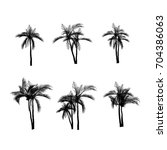 vector palm tree silhouette... | Shutterstock .eps vector #704386063