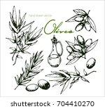 hand drawn vintage sketch of...   Shutterstock .eps vector #704410270