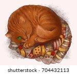 red headed cat | Shutterstock . vector #704432113
