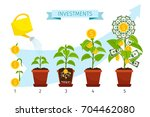 investments process concept... | Shutterstock .eps vector #704462080