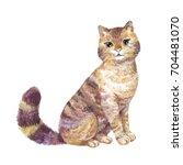 watercolor cute cat... | Shutterstock . vector #704481070