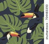 toucan | Shutterstock .eps vector #704483350