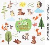 woodland baby animals vector set | Shutterstock .eps vector #704489620