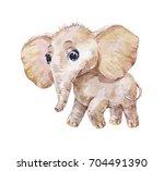 little cute elephant ... | Shutterstock . vector #704491390