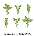 collection of caduceus... | Shutterstock .eps vector #704499586