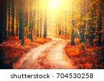 autumn  fall scene. beautiful...   Shutterstock . vector #704530258