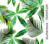 tropical seamless pattern with... | Shutterstock . vector #704549104