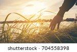 close up hand of women touch... | Shutterstock . vector #704558398