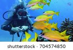 woman scuba diver with shoal of ... | Shutterstock . vector #704574850