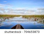 mokoro boat trip in the... | Shutterstock . vector #704653873