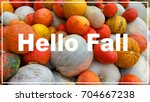 hello fall | Shutterstock . vector #704667238