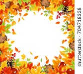 vector frame background with... | Shutterstock .eps vector #704718328