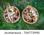 still life with two wicker... | Shutterstock . vector #704773990
