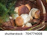 close up shot of wicker basket... | Shutterstock . vector #704774008