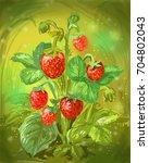 wild strawberry illustration.... | Shutterstock . vector #704802043